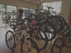 Bingham-bike-wall