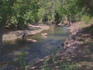Ogden-river-fisherman
