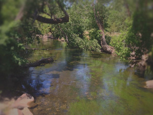 Ogden-river-waterway